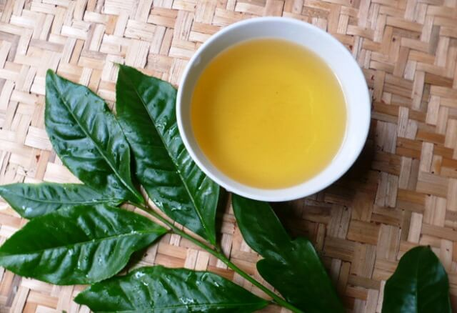 5 phút mỗi ngày với cách chữa hôi miệng bằng trà xanh 2